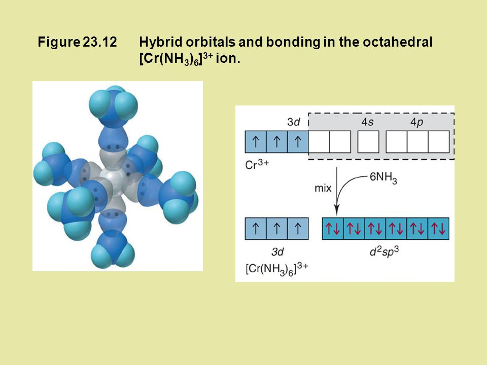 Figure 23.12 Hybrid orbitals and bonding in the octahedral [Cr(NH3)6]3+ ion.